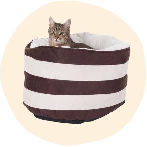 10% Rabatt auf Hunde- und Katzen - Zooplus | Gutscheincode oder Rabatt sichern!